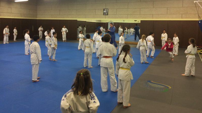 Judo passion Saint Saulve